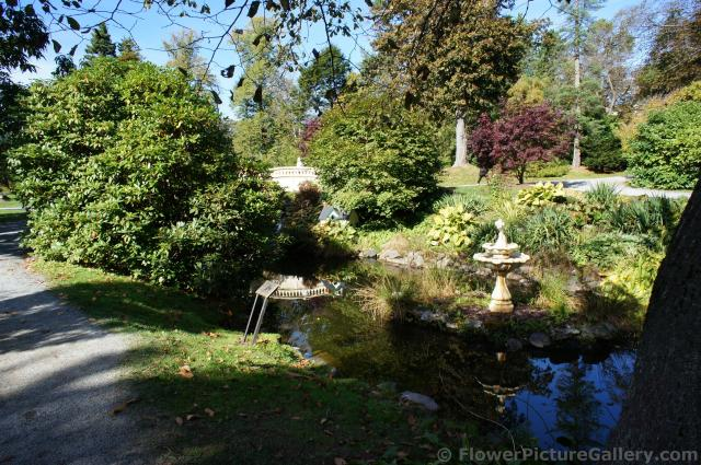 Fountain pond and bridge at the Halifax Public Gardens.jpg