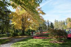 Fall foliage and red floral plants at Halifax Public Gardens.jpg