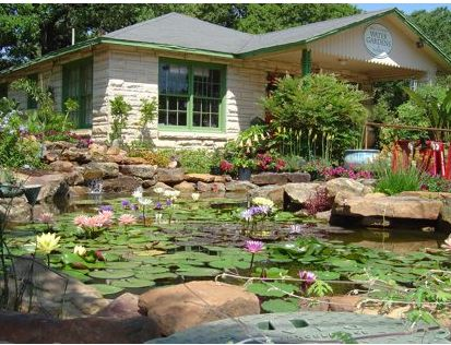 Picture of Garden pond on the front house.JPG