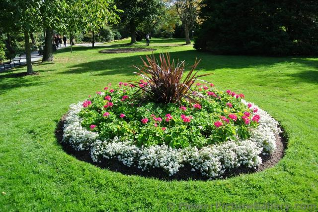 Circular mini garden with white red flowers and dark grass for Round flower bed ideas