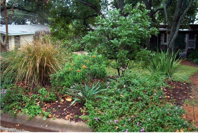 Picture Of Texas Home Garden Design Jpg Hi Res 720p Hd