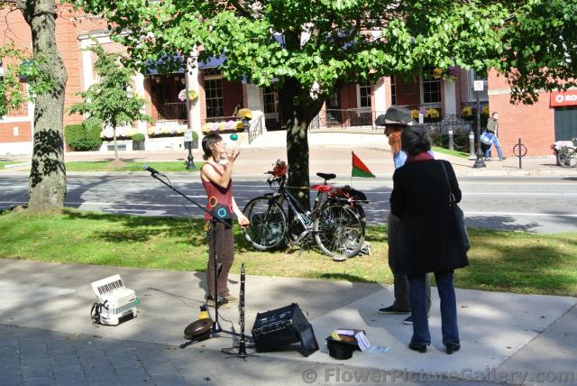 Street performers outside of Halifax Public Gardens.jpg