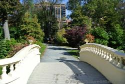 Small arched bridge at Halifax Public Gardens.jpg