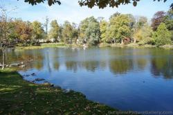 Serene pond surrounded by trees at Halifax Public Gardens.jpg