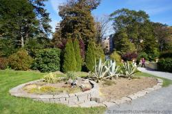 Mini garden of drought-tolerant plants at Halifax Public Gardens.jpg