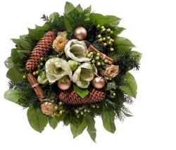 Christmas flowers images.JPG