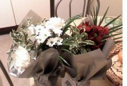 Christmas gifts flowers photo.JPG
