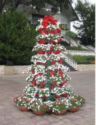 Flower Pot Christmas Tree picture.JPG