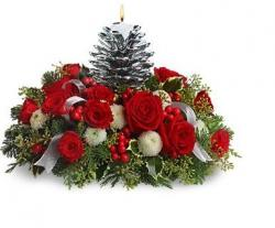 photos of christmas flowers.JPG