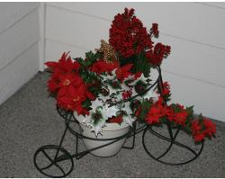 Trike Full of Christmas Flowers.JPG