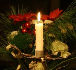 White candle and flowers for a christmas.JPG