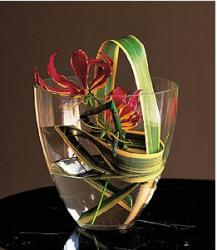 Cheap christmas flowers yet very cool.JPG