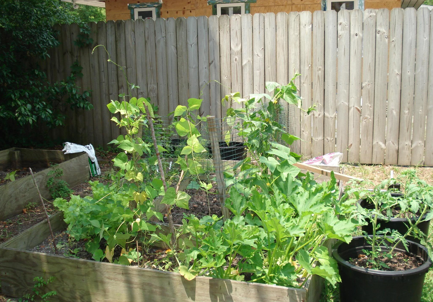 vegetable container gardening_fall vegetable gardening.PNG