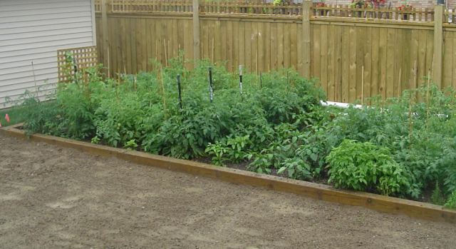 Square foot gardening great vegetable garden ideas png hi for Great vegetable garden ideas