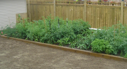 square foot gardening_great vegetable garden ideas.PNG