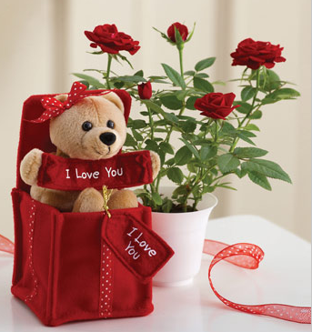 Image Of Valentine Flowers And Gifts Png 2 Comments