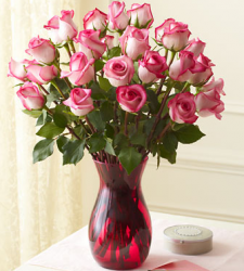 Light pink roses valentine flowers pictures.PNG