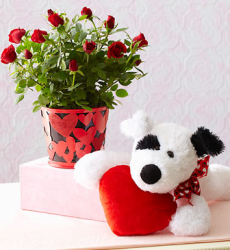 Teddy bear with flowers on valentine.PNG