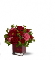 Rich red valentines day flower pictures.PNG