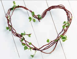 Branches valentine gift idea with green small leaves.PNG