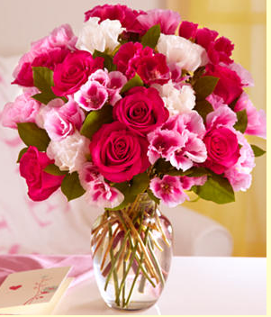 valentine flower pictures  photos, Beautiful flower