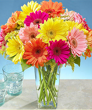 Colorful daisies valentines day image.PNG