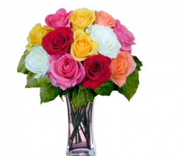 Colorful roses for valentines day.PNG