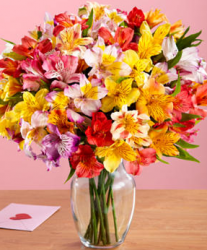 Peruvian Lilies in glass vase pictures.PNG
