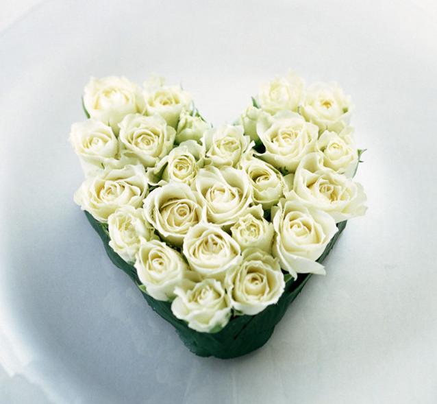 valentine flower pictures [p. 3], Ideas