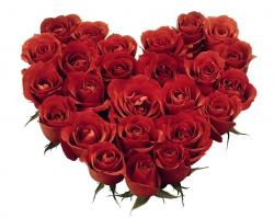 Red roses heart shaped bouquet photos.JPG