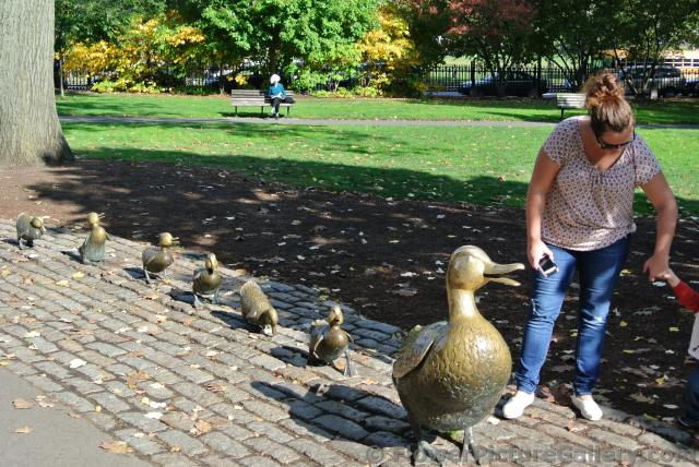 Mother duck and baby duck statues at Boston Public Garden.jpg