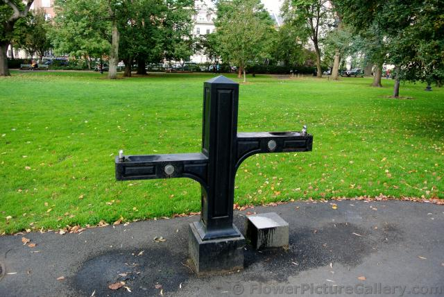 Drinking fountain at Boston Public Garden.jpg