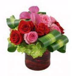Cute Looking Valentines Day Center Piece Picture.JPG