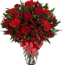 Red Roses Valentines Day Picture.JPG