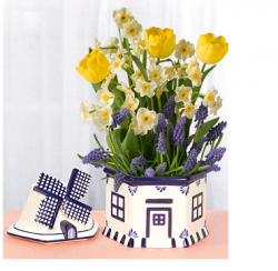 Spring flowers for mother's day special gift idea with unique potter.PNG