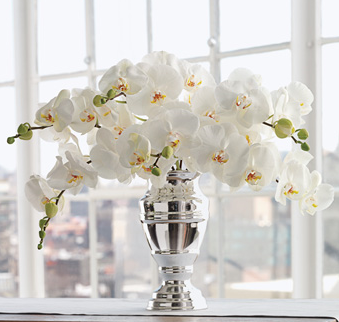 Martha Stewart White Phalaenopsis Orchid Bouquet with elegant silver vase photo.PNG