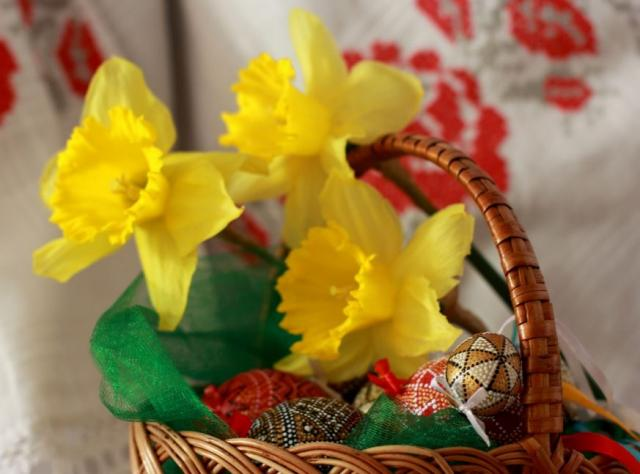 Easter flowers pictures 50 pics easter basket with yellow easter flowers and beautiful easter eggs with painted patternsg mightylinksfo