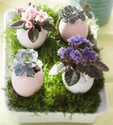 Easter party flowers center piece ideas.JPG