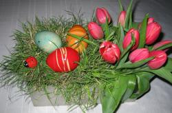Red Easter flowers and Easter eggs arrangement images.JPG