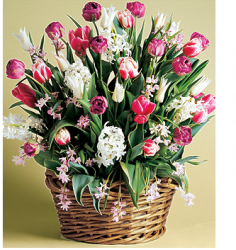 Basket flowers idea for mother's day.PNG