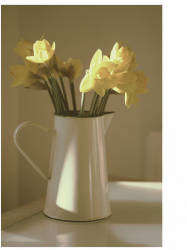 Beautiful garden flowers for mother's day flowers gift idea.PNG