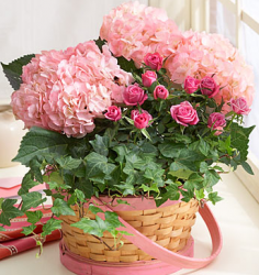 Flowers basket mother's day flowers in pink.PNG