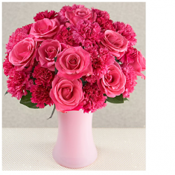 Hot pink carnations and hot pink roses for mother's day.PNG