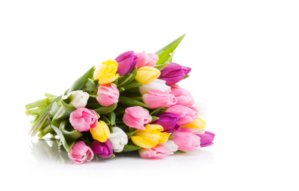 Mother's day tulips bouquet picture.PNG