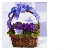 Pretty purple flowers for your special mommy.PNG