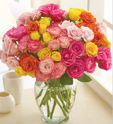 Roses in bloom flowers gifts picture.PNG