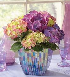 Make an order mother's day flowers with this beautiful Purple Hydrangea in Mosaic Planter.PNG
