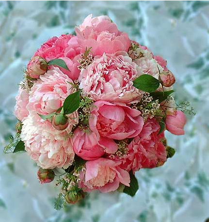 Wedding Flower on Pink Peony Wedding Bouquet Images Png