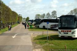 Tons of Tour Buses @ Keukenhof Parking Lot.jpg