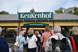 Keukenhof Entrance Area.jpg